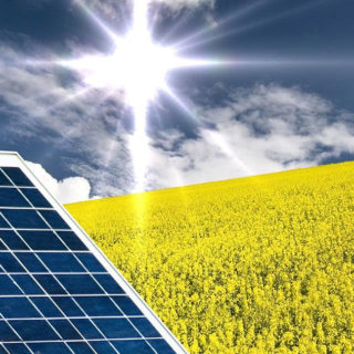 Energie rinnovabili, le fonti alternative sostenibili per produrre energia